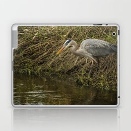 Great Blue Heron By the Water's Edge Laptop & iPad Skin