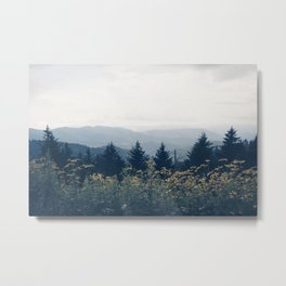 the mountain air Metal Print