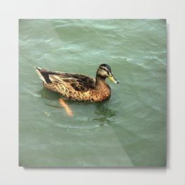 River Paddling Metal Print