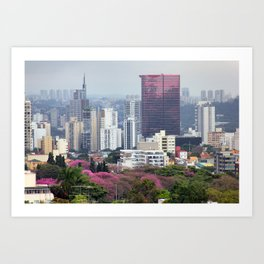 São Paulo I Art Print
