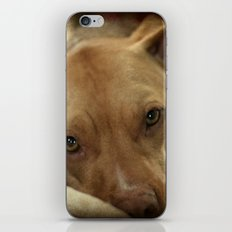 I am thinkin' iPhone & iPod Skin