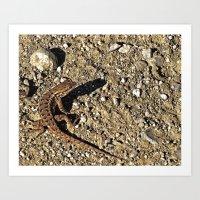 Lizard Stare II Art Print