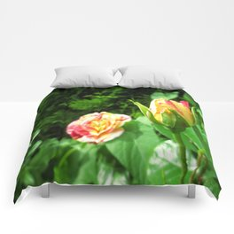 Coloured Roses Comforters