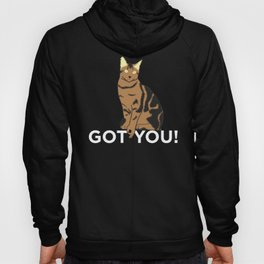 Funny Cat Circle Game Got You Cat Lover Design Hoody