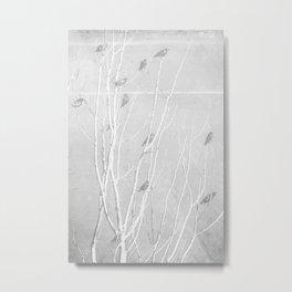 Birds of Easton Grey Metal Print