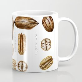 Nuts - Fruit Illustration Coffee Mug