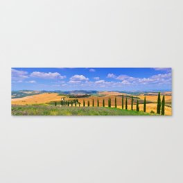 Cypress trees and meadow with typical tuscan house Canvas Print