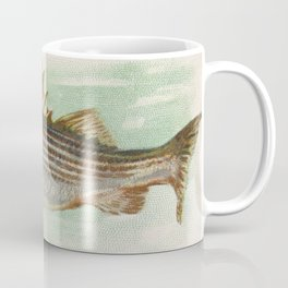 Vintage Striped Bass Illustration (1889) Coffee Mug
