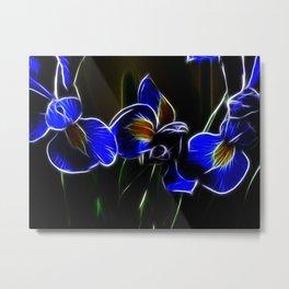 Iris Lights Metal Print