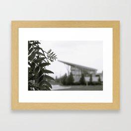 Stuff Behind Plants - CSU Rec Center Framed Art Print