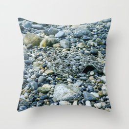 Flounder Camouflaged Underwater, Perfect Camouflaged Underwater life Throw Pillow
