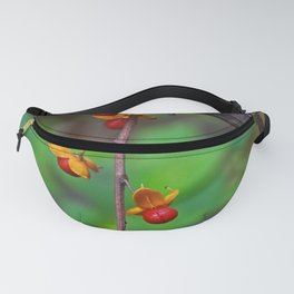 Dangling the Day Away Fanny Pack
