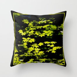 late summer sunny maple leaves Throw Pillow