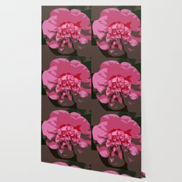 Pink Camelia Wallpaper