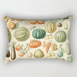 Autumn Harvest // Fruits by Adolphe Millot XL 19th Century Pumpkins Science Textbook Artwork Rectangular Pillow