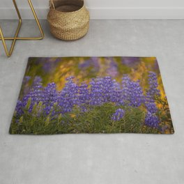 US Department of Agriculture - Lupine Rug