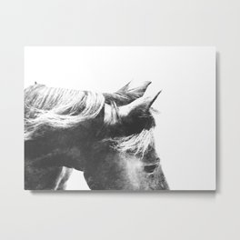 Horse Head III Metal Print