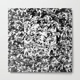 Square - Gooses Metal Print