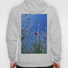 poppy flower no4 Hoody