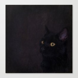 Black Cat - Prince Of Darkness Canvas Print
