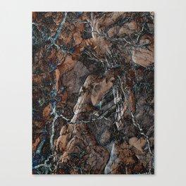 Chocolate Crack Canvas Print