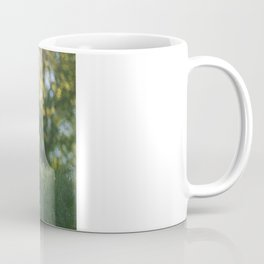 Grass in sunshine Coffee Mug