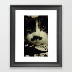 King Charlie the Cat Framed Art Print