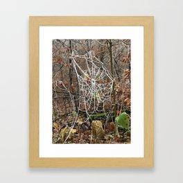 Frozen web Framed Art Print