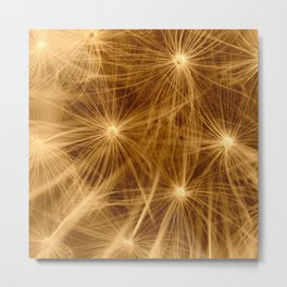 Dandelion art Metal Print