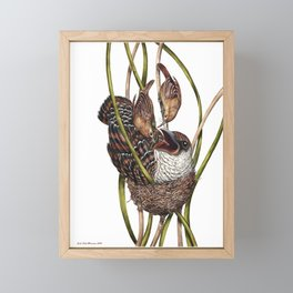 Baby Bird II Framed Mini Art Print