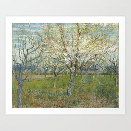 Orchard with Blooming Apricot Trees Art Print
