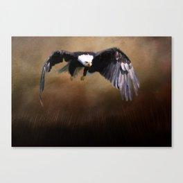 Power in Flight Canvas Print