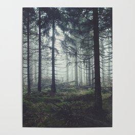 Through The Trees Poster
