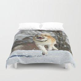 Icelandic Sheepdog 016 Duvet Cover