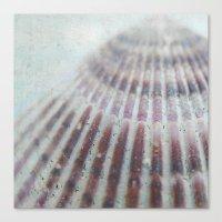 seashell Canvas Prints featuring SEASHELL by Christina Lynn Williams