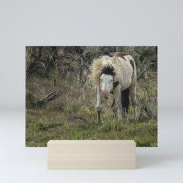 Wild Thing - South Steens Herd Mini Art Print