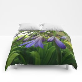 Purple Agapanthus Comforters