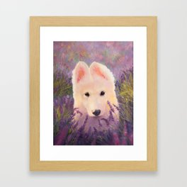 In the lavender fields Framed Art Print