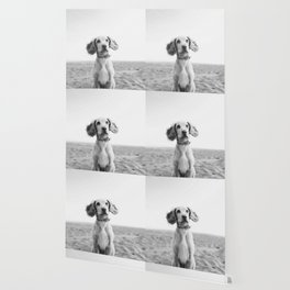 Man's Best Friend (Black and White) Wallpaper