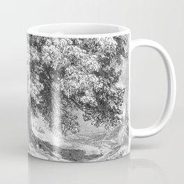 Linden Tree Print from 1800's Encyclopedia Coffee Mug