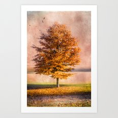 A sunny autumn day Art Print