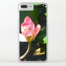 Hanalei Lotus, by Mandy Ramsey, Haines, AK Clear iPhone Case