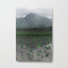 Kauai Metal Print