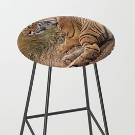 Ranthamboure Roadblock Tiger by Alan M Hunt Bar Stool