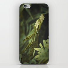 Ferm iPhone & iPod Skin