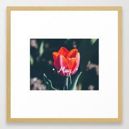 May Framed Art Print
