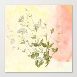 The air the flower breathes Canvas Print