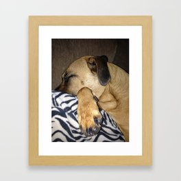 Lovable Lucie Framed Art Print