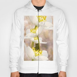 Black Cat With White Flowers #decor #buyart #society6 Hoody