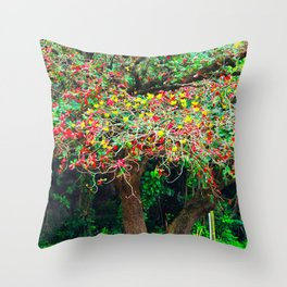 big tree with green yellow and red leaves Throw Pillow